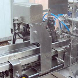 Rotary Pouch Fill Seal Machine